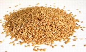 farinha-de-linhaça-dourada-semente